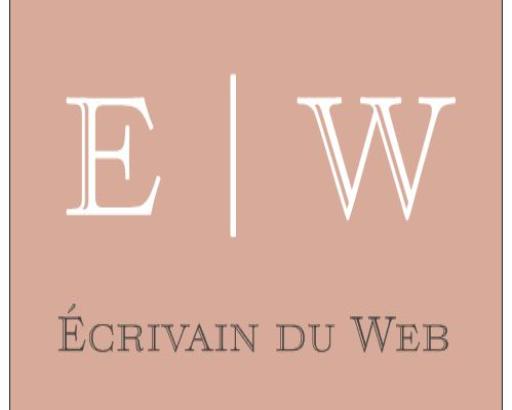 Écrivain du Web